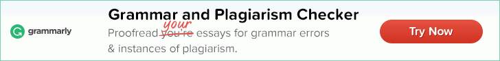 grammarly adds